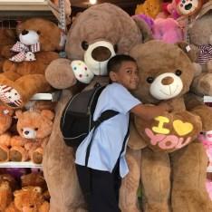 school boy with teddy bears