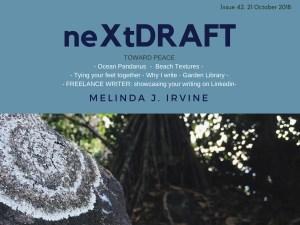 neXtDRAFT an eZine by Melinda J. Irvine Issue 42