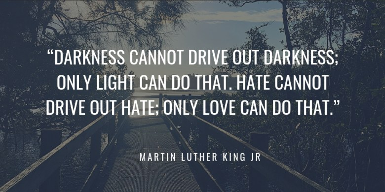 """DARKNESS CANNOT DRIVE OUT DARKNESS; ONLY LIGHT CAN DO THAT. HATE CANNOT DRIVE OUT HATE; ONLY LOVE CAN DO THAT."" MARTIN LUTHER KING JR"