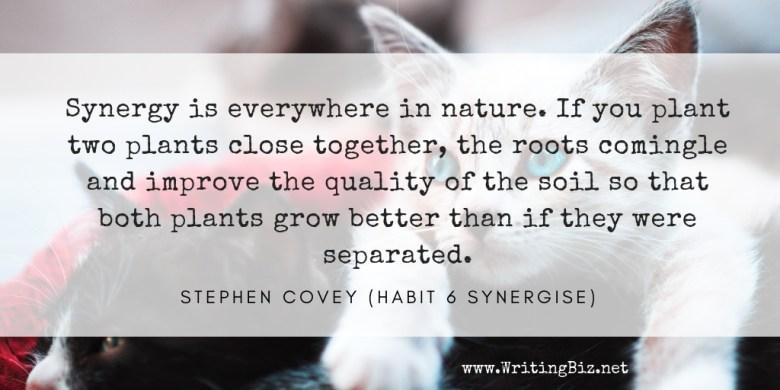 Melinda J. Irvine - freelance writer -- synergise
