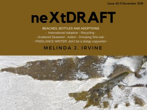 neXtDRAFT an eZine by Melinda J. Irvine Issue 45