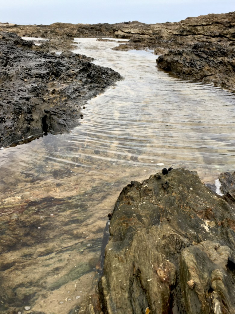 wind rippled rock pool