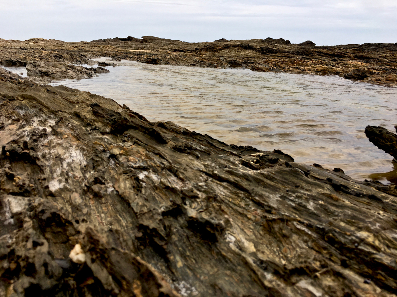 rock pool with wind ripples