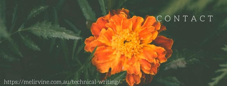 Melinda J. Irvine -- technical writer4 on writingbiz.net