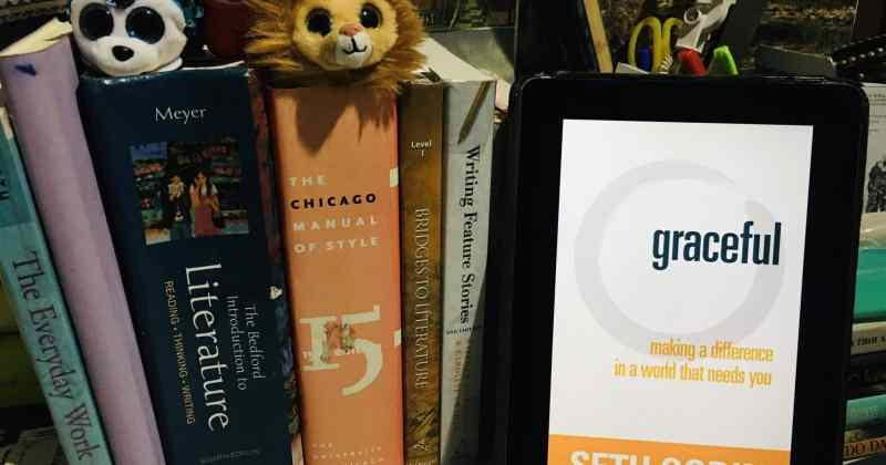 BOOK REVIEW - Gaceful by Seth Godin