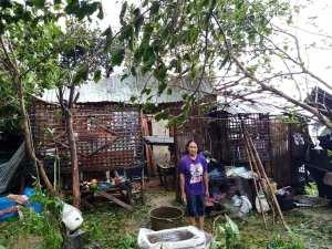 typhoon ursuala 2019 estancia