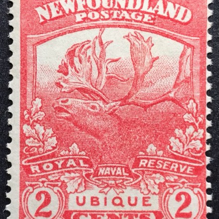 1919 Newfoundland Postage Stamp (2 cent) Red Caribouv2 v2