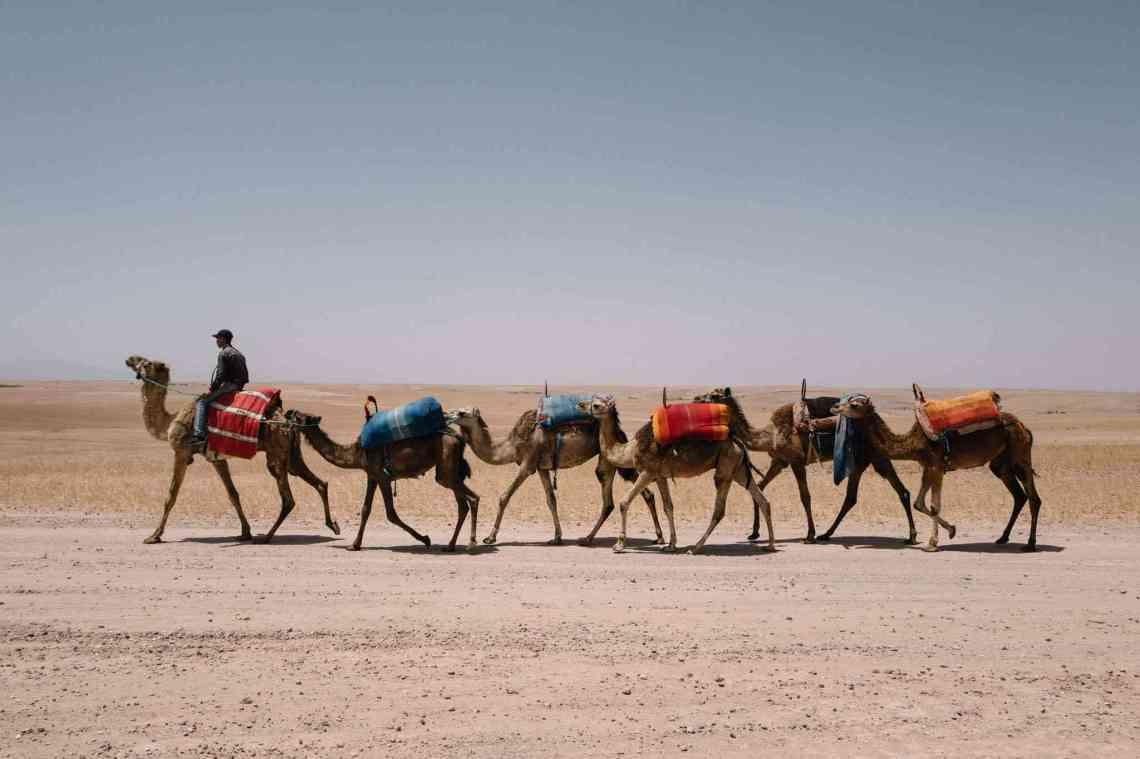Bodas 2020 inspiradas en Medio Oriente