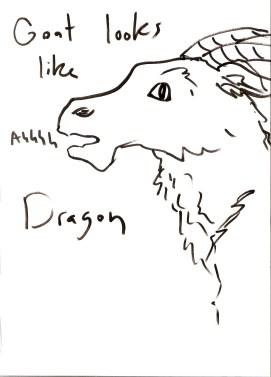 goat_looks_like_a_dragon_sketch1