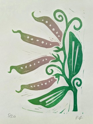 Colourful lino print by Melissa Birch, showing Sweet Pea pods with green leaves and tendrils