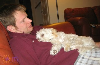 puppy lying on man's chest diary of a dog