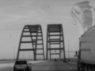 plant boy_bridges from car