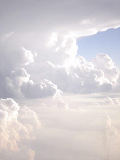 plant boy_clouds_01