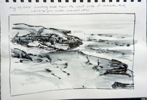Schoodic Point in ink 052917