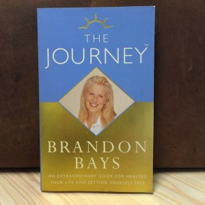 Book - Brandon Bays - The Journey