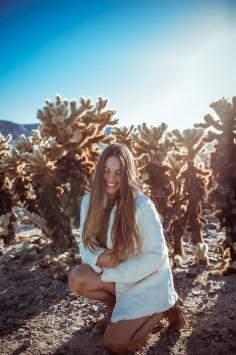 LIFESTYLE photos: Chollas, Joshua Tree