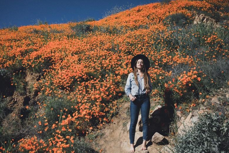 LIFESTYLE photos: California Super Bloom