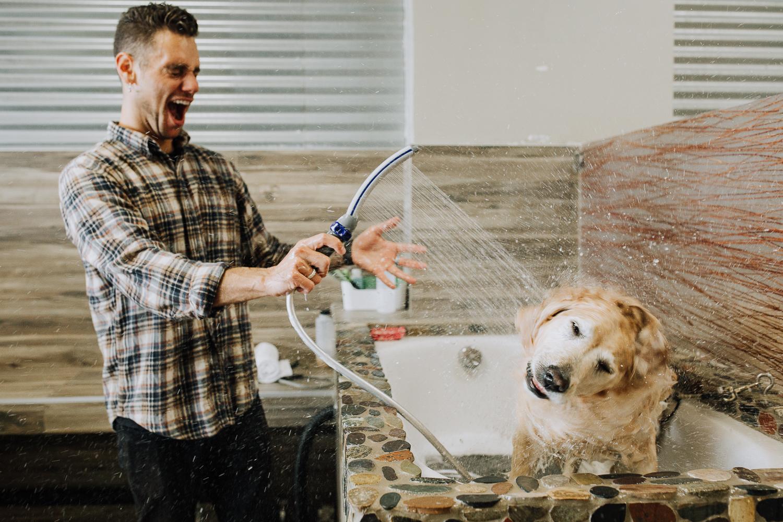 San Diego Dog Bathing