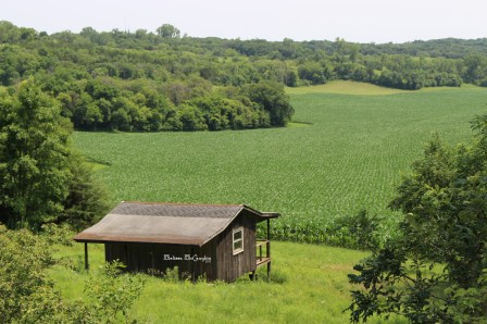 Loess Hills Iowa