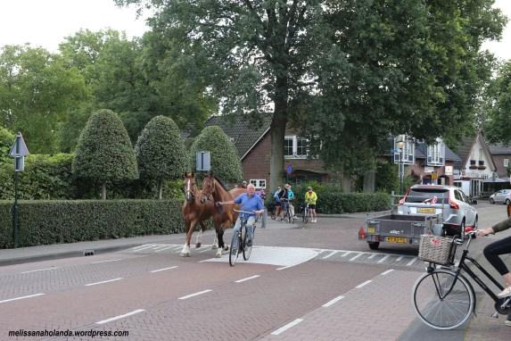 Cidade de Blaricum na Holanda