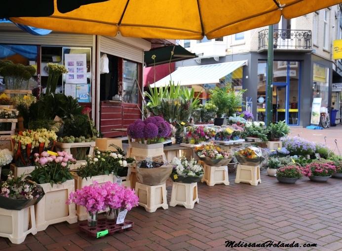 Flores em Hilversum