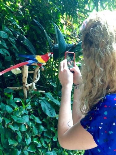 Lina and the parrot at the Audubon Aquarium
