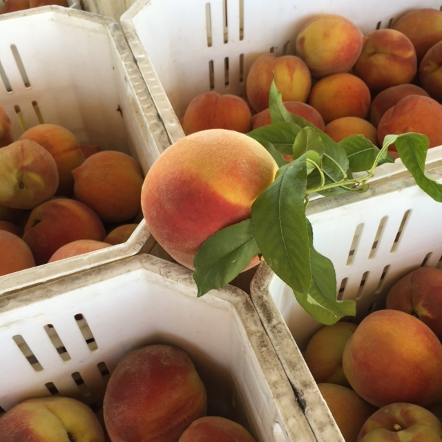 Masumoto Organic Sun Crest Peaches