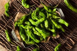 Raw Organic Green Shashito Peppers