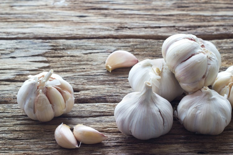 Garlic on the wooden background