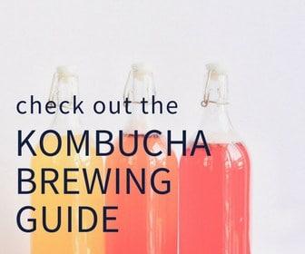 Kombucha Guide