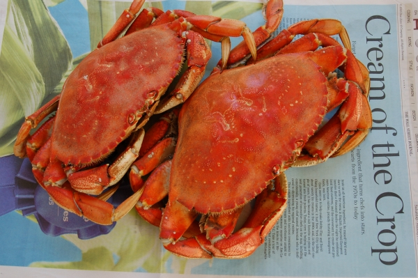 Dungeness Crab from the Puget Sound.