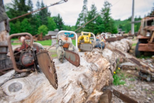 Old chainsaws at Camp 18