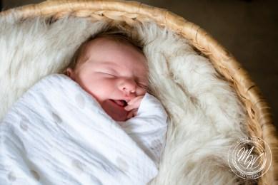 Violet Pearl's Newborn Photos-18