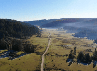 Uluyayla Kamp Alanı | Bartın Kamp Yerleri