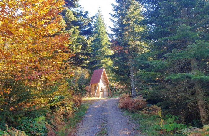 Zoni Yaylası Kamp Alanı | Bartın Kamp Yerleri