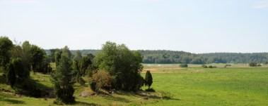 2016-07-22, Angarnsjöängen, utsikt från fågeltornet