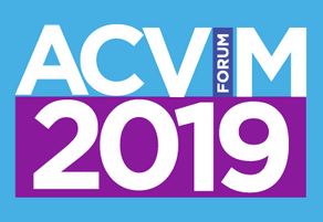 VitDAL present research at ACVIM Forum