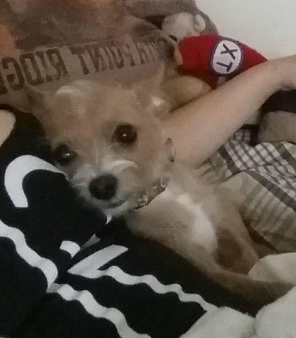 Rizzo Cuddling