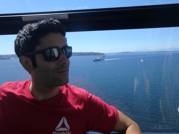 Seattle Great Wheel | Seattle, Washington | Scruffy on Ferris Wheel