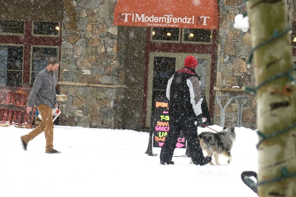 River Run | Keystone, Colorado | Snowing, Dogs