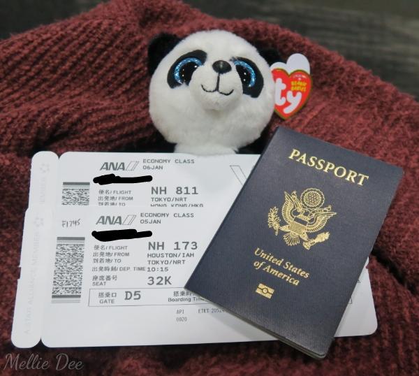 2017 Asia Trip | Houston to Hong Kong Tickets, Panda