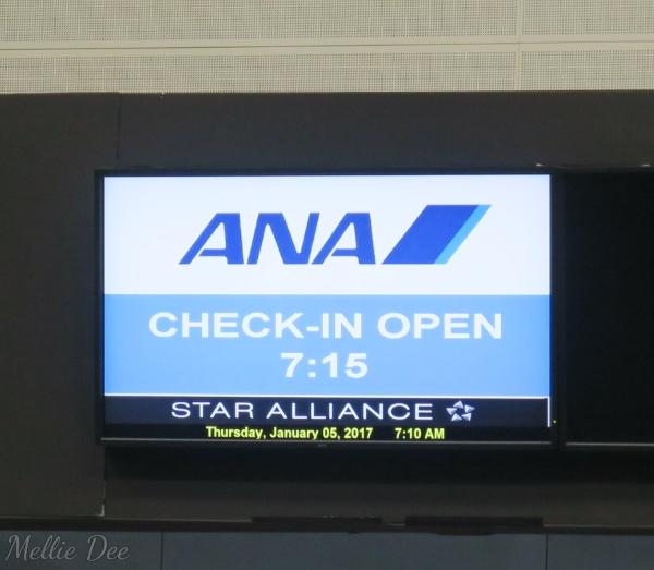 ANA Aircraft Houston Counter