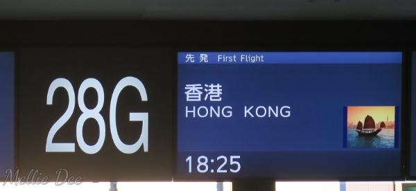 ANA Aircraft | Narita to Hong Kong Gate
