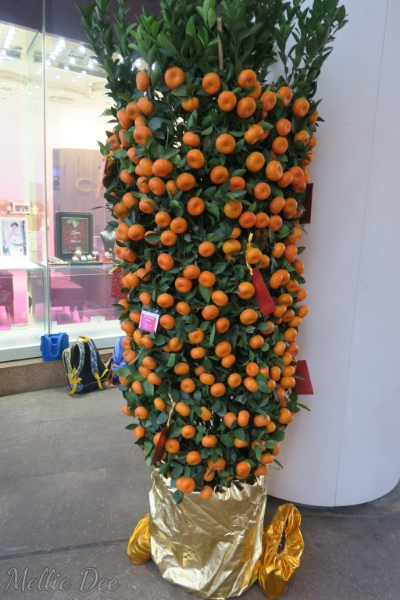 Golden Orange Tree | Hong Kong