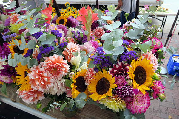 Dane County Farmer's Market | Madison, Wisconsin | Flowers