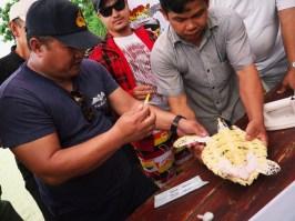 Koh Talu, réhabilitation des tortues