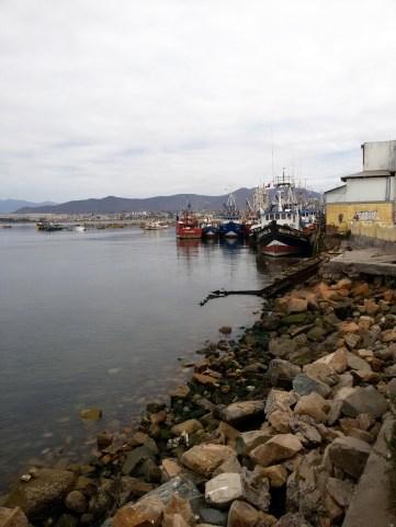 Chili, Coquimbo