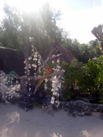 Lagoonarium, Moorea