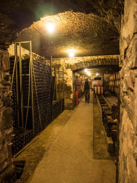 Dans la cave de Violot-Guillemard