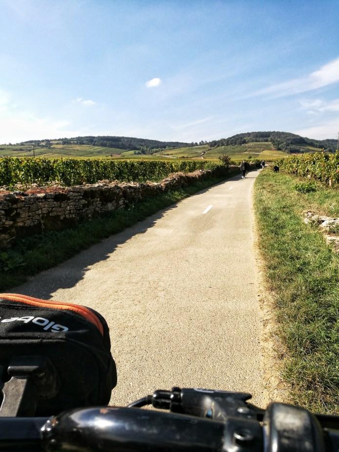 A travers les vignes du pays Beaunois abev KicknGo